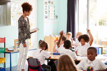 Motivamos al alumnado fomentando la autonomía y la participación.